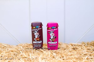 Cow Wow comes in Chocolate Chip Cathy and Fruity Trudy