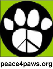 peace4paws_ORG